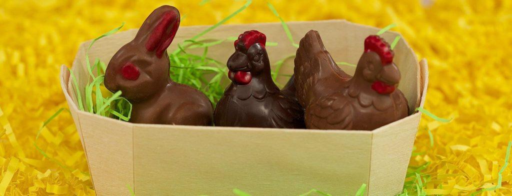 Chocolat pour Pâques, poules et lapin dans leur petit panier.